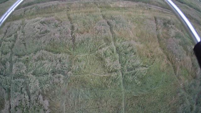 Таинственные линии на полях
